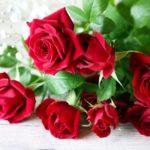 【送別会の花束】花屋が教える!注文のコツと注意点をまとめたよ