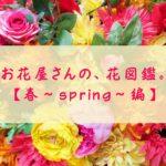 花の名前、わかりますか?お花屋さんでよく見る花10選【春~spring~編】