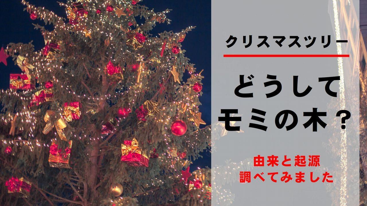 クリスマス モミの木